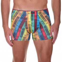 Boarding - Shorts