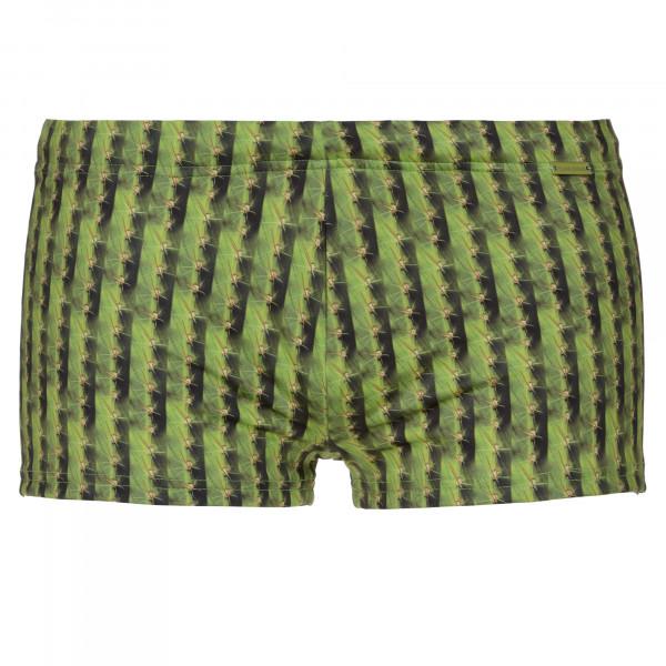 Cactus Stripes - Hip short