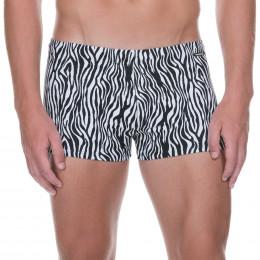 Zebra Life - Short