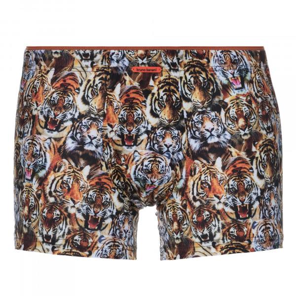 Tiger Parade - Shorts