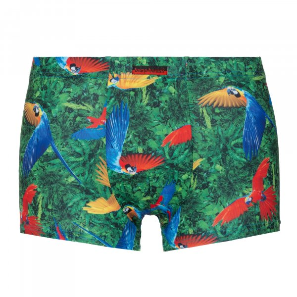 Parrots - Hip Shorts