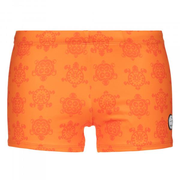 Sea Turtle - Shorts
