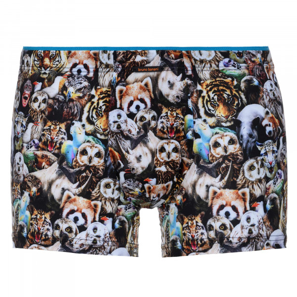Urban Zoo - Short