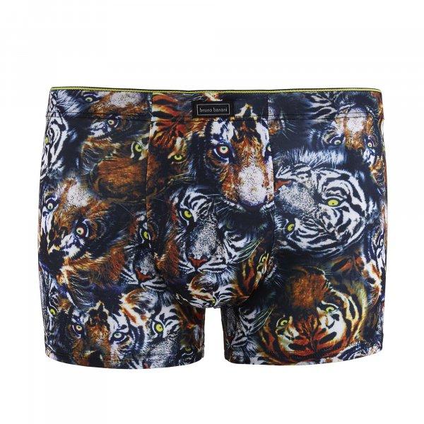 Tigress - Shorts