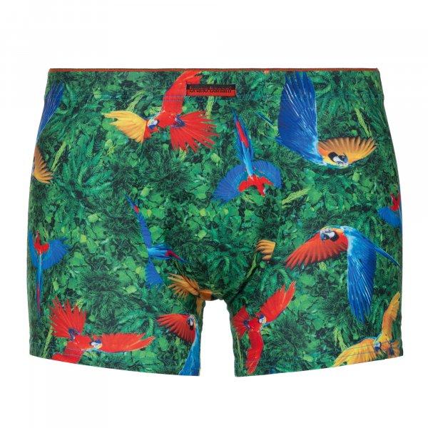 Parrots - Shorts
