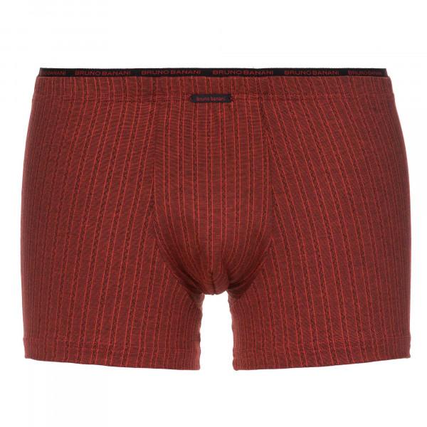 Zigzag Stripe - Short