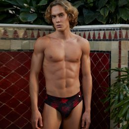Red Forest - Sports Brief